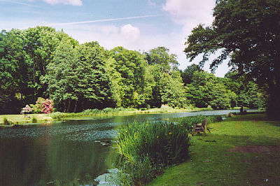 An image of the pond at Gunpowder Mills in Chilworth, where Lingard Jones provides Handyman Services